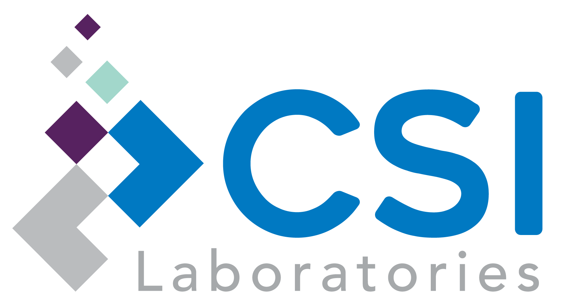 CSILabs